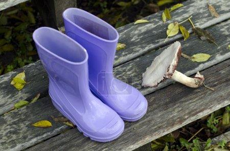 Purple boots and forest mushroom on a doorsteps du...