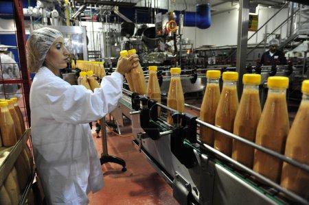 Photo pour SDEROT, ISR - 11 AOÛT : Travailleur de la chaîne de production dans l'usine alimentaire le 11 août 2009. Les ventes d'aliments transformés dans le monde entier sont d'environ 3,2 billions de dollars américains (2004 ) - image libre de droit