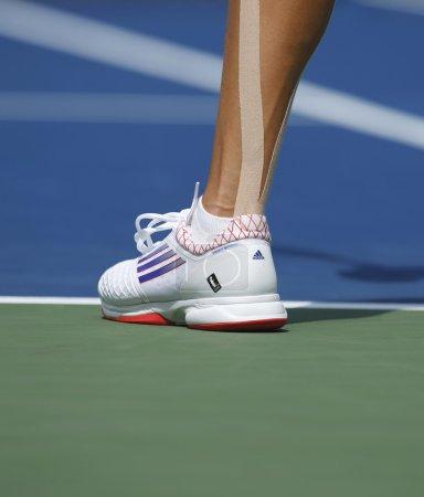 Grand Slam champion Ana Ivanovich