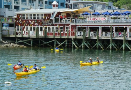 Tourists riding sea kayaks in Bar Harbor, Maine