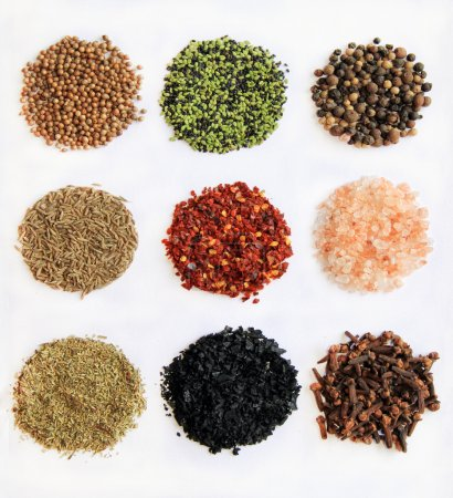 Photo for Variety of spices From left to right and up to down: coriander, sesame, Black Peppercorn, cumin, espelette chili, himalayan salt, Provencal Herbs, black salt, clove, - Royalty Free Image