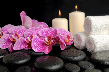 Beautiful spa concept of zen stones with drops, blooming twig of