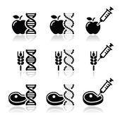 Food DNA genetically modyfied food GMO icons set