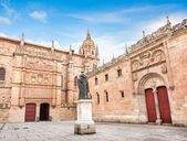 Famous University of Salamanca, Castilla y Leon region, Spain