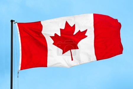Photo pour Drapeau canadien agitant le vent sur un ciel bleu clair . - image libre de droit