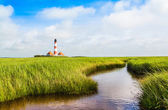 Beautiful landscape with small pond and lighthouse in the background at North Sea in Nordfriesland, Schleswig-Holstein, Germany