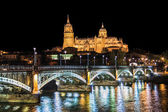 Beautiful view of the historic city of Salamanca with New Cathedral and Enrique Esteban bridge at night, Castilla y Leon region, Spain