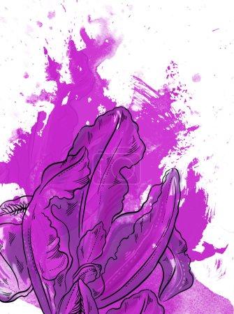 Photo pour Iris dessiné par ordinateur sur fond de texture aquarelle - image libre de droit