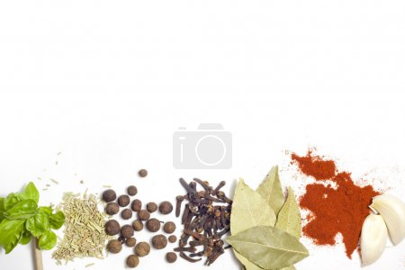 Photo for Herbs and spices border on white background - Royalty Free Image