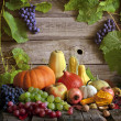 Fruits and vegetables with pumpkins in autumn stil...