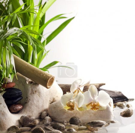 Orchids and zen stones on water spa concept on white background