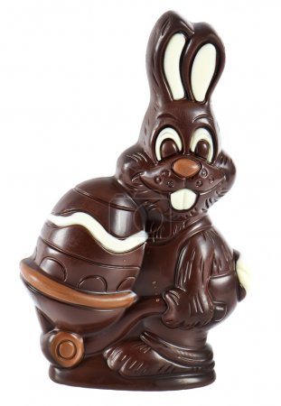 Chocolate easter bunny with egg