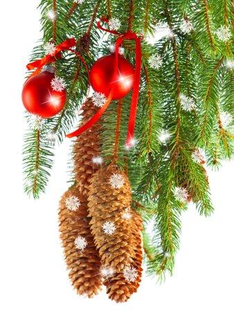 Foto de Feliz Navidad. decoración con rama de árbol de abeto y bolas rojas. concepto de tarjeta - Imagen libre de derechos