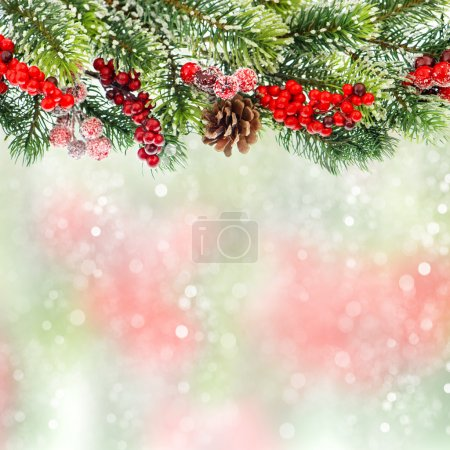 Christmas tree branch with red berrries