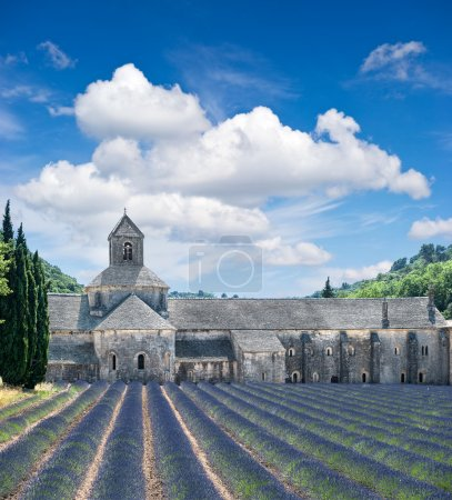 Senanque abbey with lavender field, landmark of Provence