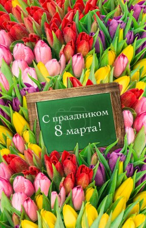 Photo for Tulips and blackboard. fresh spring flowers with water drops. womans day background with russian text 8 march - Royalty Free Image