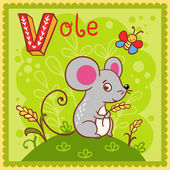 Illustrated alphabet letter V and vole