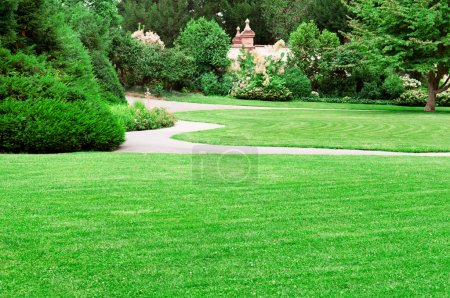 Photo for Summer park with beautiful green lawns - Royalty Free Image