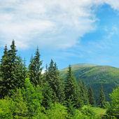 scenic mountain peaks