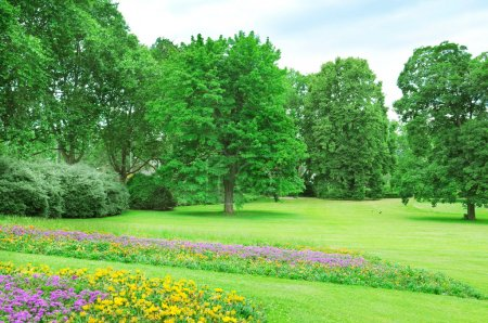 Summer park with lawn and flower garden