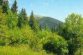 mountain peaks against the blue sky