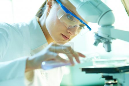 Photo for Serious female chemist working in laboratory - Royalty Free Image