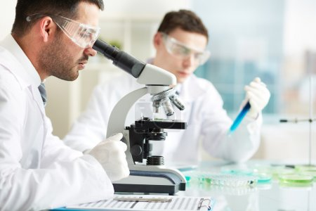 Serious clinicians studying chemical elements in l...