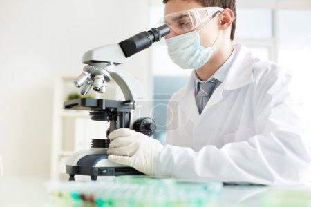 Photo pour Image d'un jeune stagiaire analysant des spécimens en laboratoire - image libre de droit