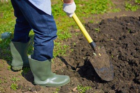 Farmer digging in the garden