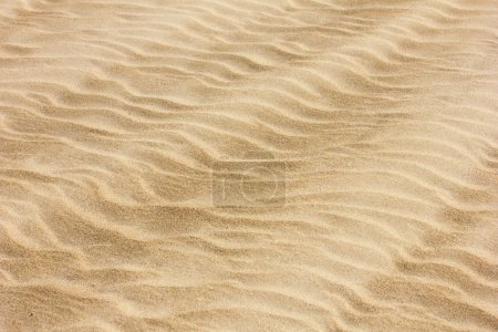 Photo for Texture of yellow sand dunes - Royalty Free Image