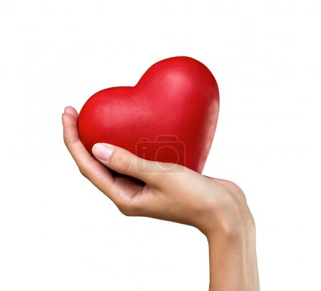 Heart in hand isolated