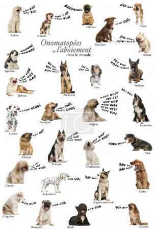 Composition of dog barking onomatopoeias from the world, French
