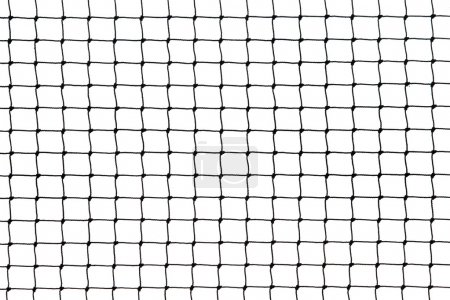 Rope net on white background