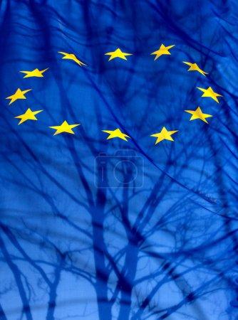 Photo pour Un drapeau de l'Union européenne avec la silhouette d'un arbre d'ombre et des branches - image libre de droit