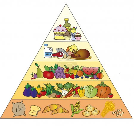 Photo for Illustration of food pyramid isolated - Royalty Free Image