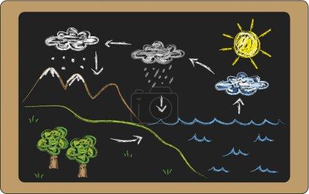 Illustration of water cycle on blackboard...
