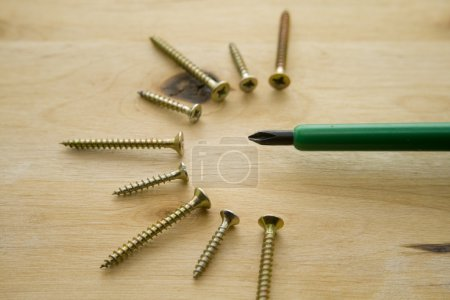 Screwdriver with screws