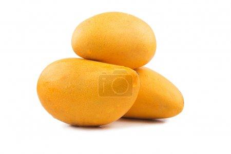 Fresh mango fruits isolated on white background