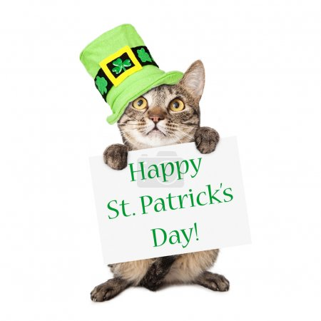 Photo pour Un mignon chat rayé brun et noir portant un chapeau vert festif tout en tenant un panneau avec les mots Happy St. Patrick's Day - image libre de droit