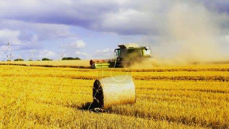Photo pour Une moissonneuse-batteuse dans un champ de blé - image libre de droit