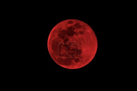 Photo for Blood moon concept of a red full moon against a black sky - Royalty Free Image