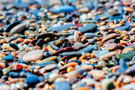 Photo pour Galets colorés sur la plage - image libre de droit