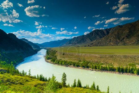 high mountains and lush meadows of Altai