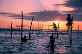 Srílanské tradiční chůda rybář