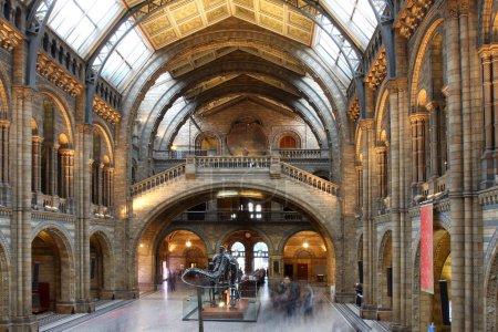 Photo pour Natural History Museum à Londres, Angleterre - image libre de droit