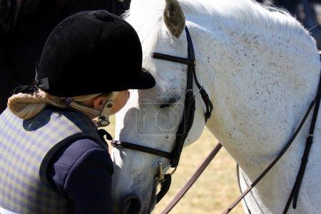 Photo pour Amour des chevaux - image libre de droit