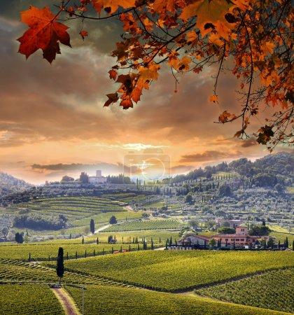 paysage de vignoble de Chianti en Toscane, Italie