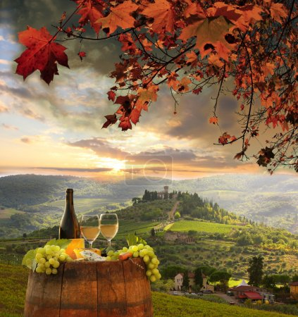 vin blanc avec un Canon sur le vignoble en chianti, Toscane, Italie
