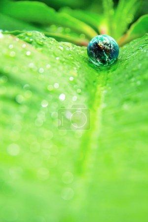 Photo pour Image abstraite du petit monde dans la nature - image libre de droit