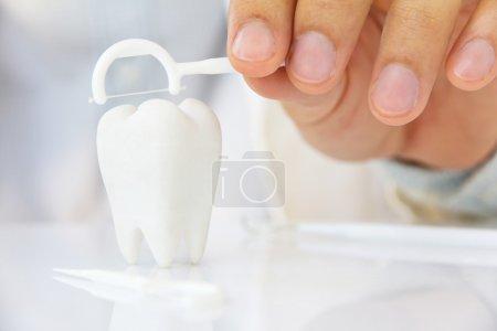 Photo pour Main tenant fil dentaire avec molaire - image libre de droit